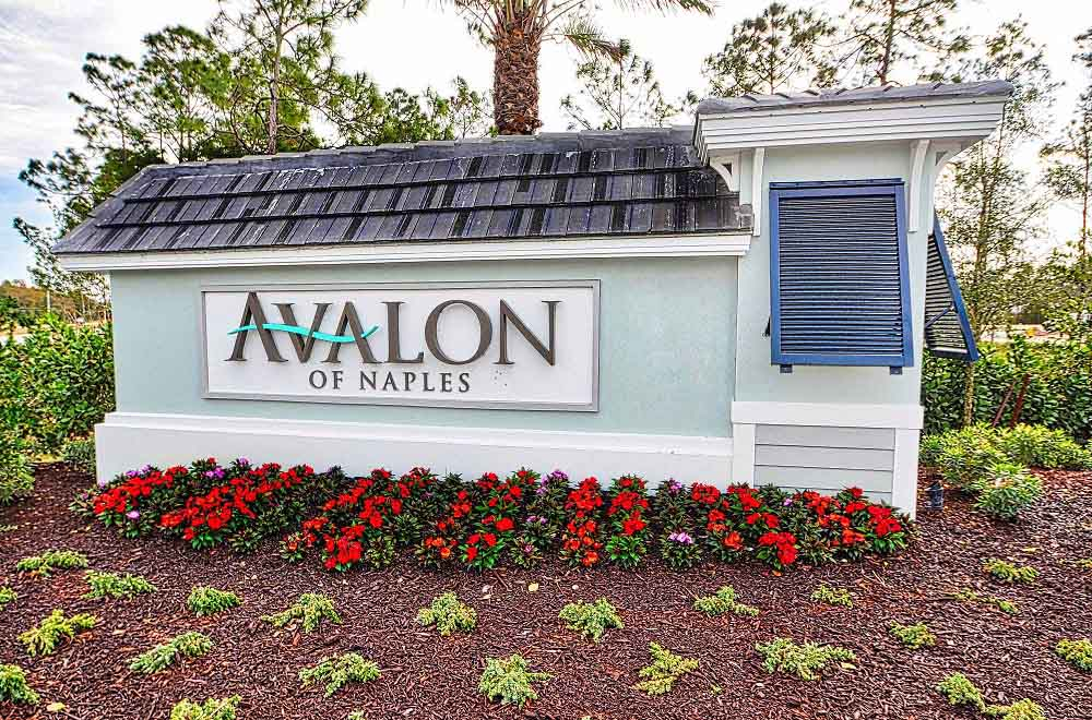New Community of Avalon